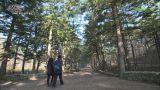 한국의 아름다운 길_부안고창 편
