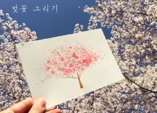 Spring, cherry blossom tree, Drawing_ Watercolor paint...
