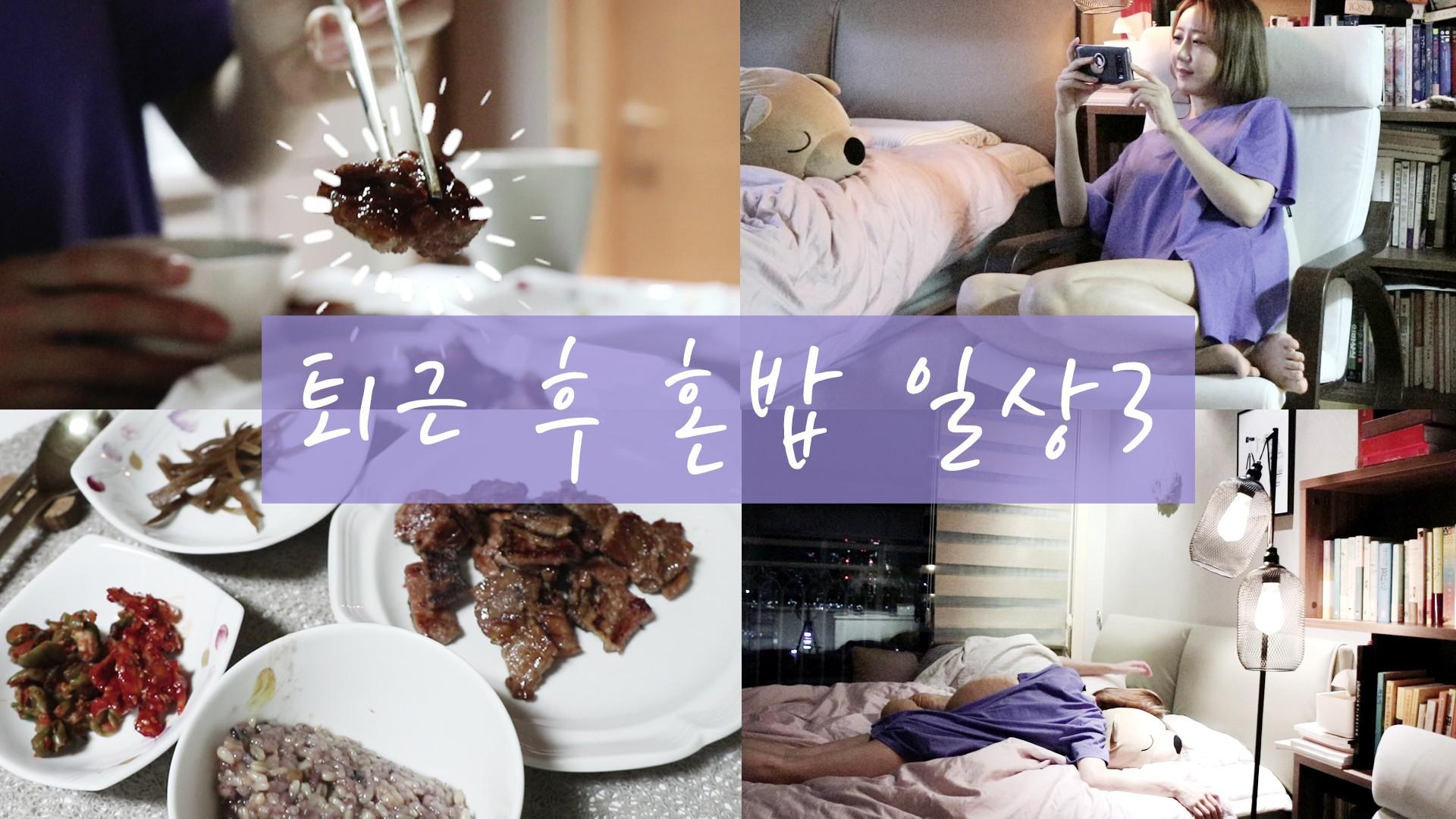 퇴근 후 혼밥 일상3/여우비
