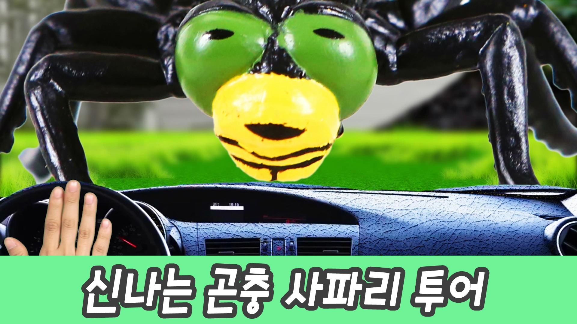 한국어ㅣ신나는 곤충 사파리 투어, 어린이 동물 만화, 곤충 이름 외우기ㅣ꼬꼬스토이
